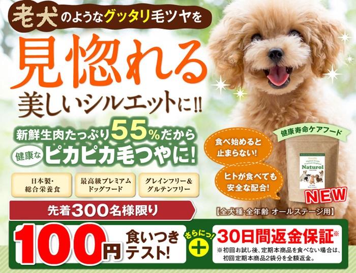 ナチュロル100円