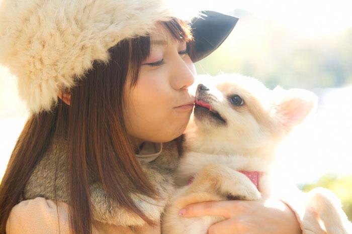 犬の15歳は長生き?愛犬を長生きさせる秘訣まとめ