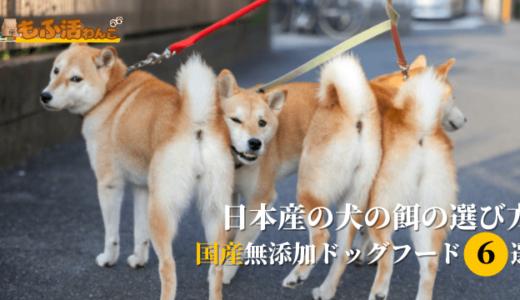 国産無添加ドッグフードおすすめ人気ランキング!日本産の犬の餌の選び方