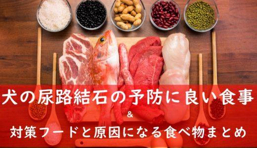犬の尿路結石にささみ・さつまいもは良くない食べ物?予防食事とおすすめフード