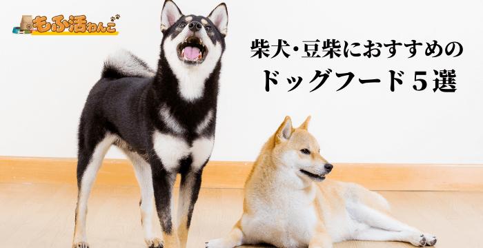 柴犬・豆柴ドッグフードおすすめ6選 評判が良い餌ランキング