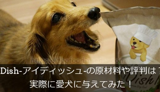 【レビュー】iDish-アイディッシュ-の口コミ・評判は?実際に愛犬に与えてみた!