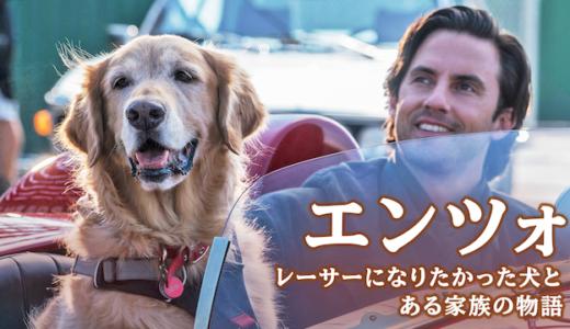 犬の感動映画『エンツォ レーサーになりたかった犬とある家族の物語』の動画のフル視聴方法とあらすじと感想!無料で動画配信をみる方法