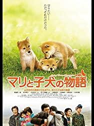 犬の感動映画『マリと子犬の物語』の動画のフル視聴方法とあらすじと感想!無料で動画配信をみる方法