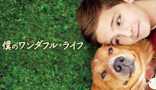 犬の感動映画『僕のワンダフルライフ』の動画のフル視聴方法とあらすじと感想!無料で動画配信をみる方法
