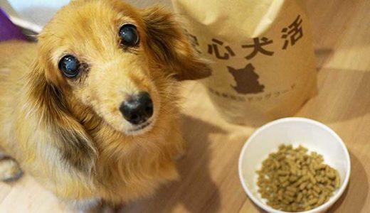 安心犬活を愛犬に与えてみたレビュー!口コミ評判や実際の原材料が安心できるか調査しました